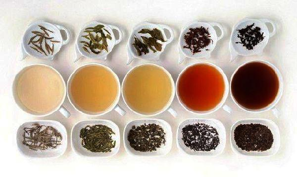 Herbal Vs Nonherbal Teas